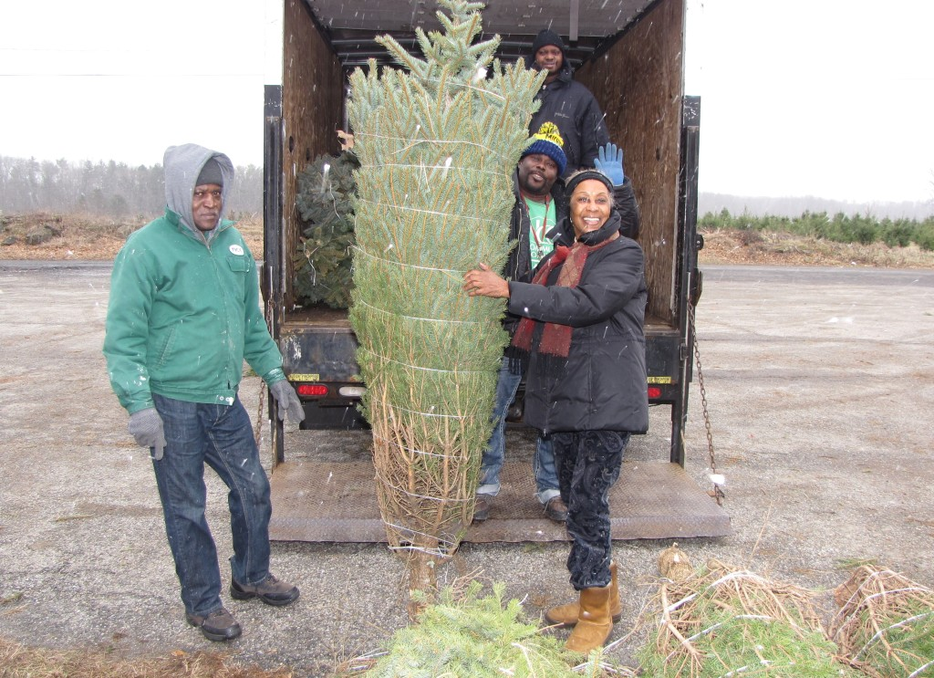 Tree delivery: NCC Environmental Services staff and Madge Wilson, right, picked up about 20 Christmas trees donated by St. Paul's Abbey in Newton.
